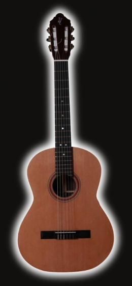 Classical Guitar Ziricote
